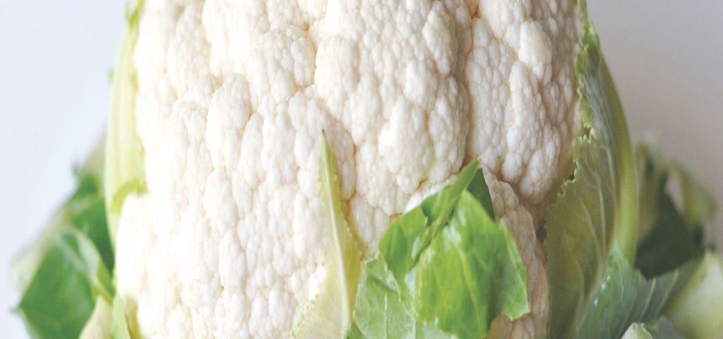 بذر کلم ما با بیش از 30 سال تجربه درتولید و توزیع و مصرف