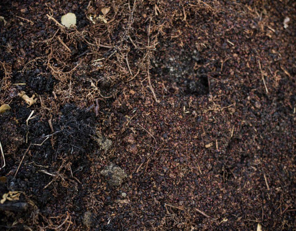 خاک پیت ماس فلات قاره