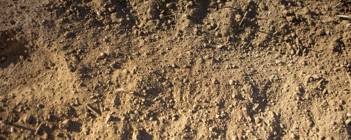 خاک نشاء فلات قاره